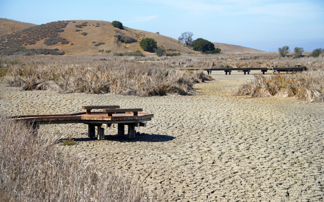 Is California Still In Drought? California Drought Status & Predictions