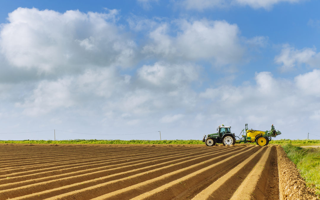 Tilling vs. Plowing: What's the Difference?